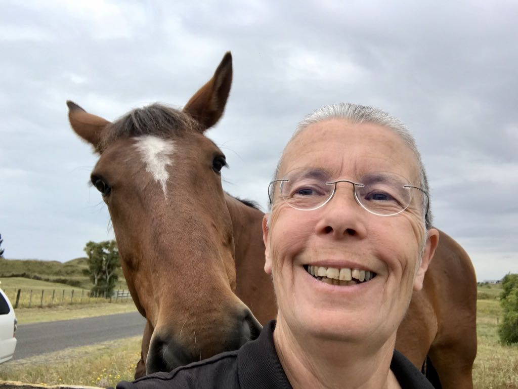 Selfie with large horse.