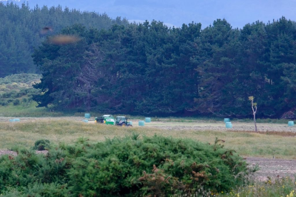 Tractor and baling machine collecting hay.
