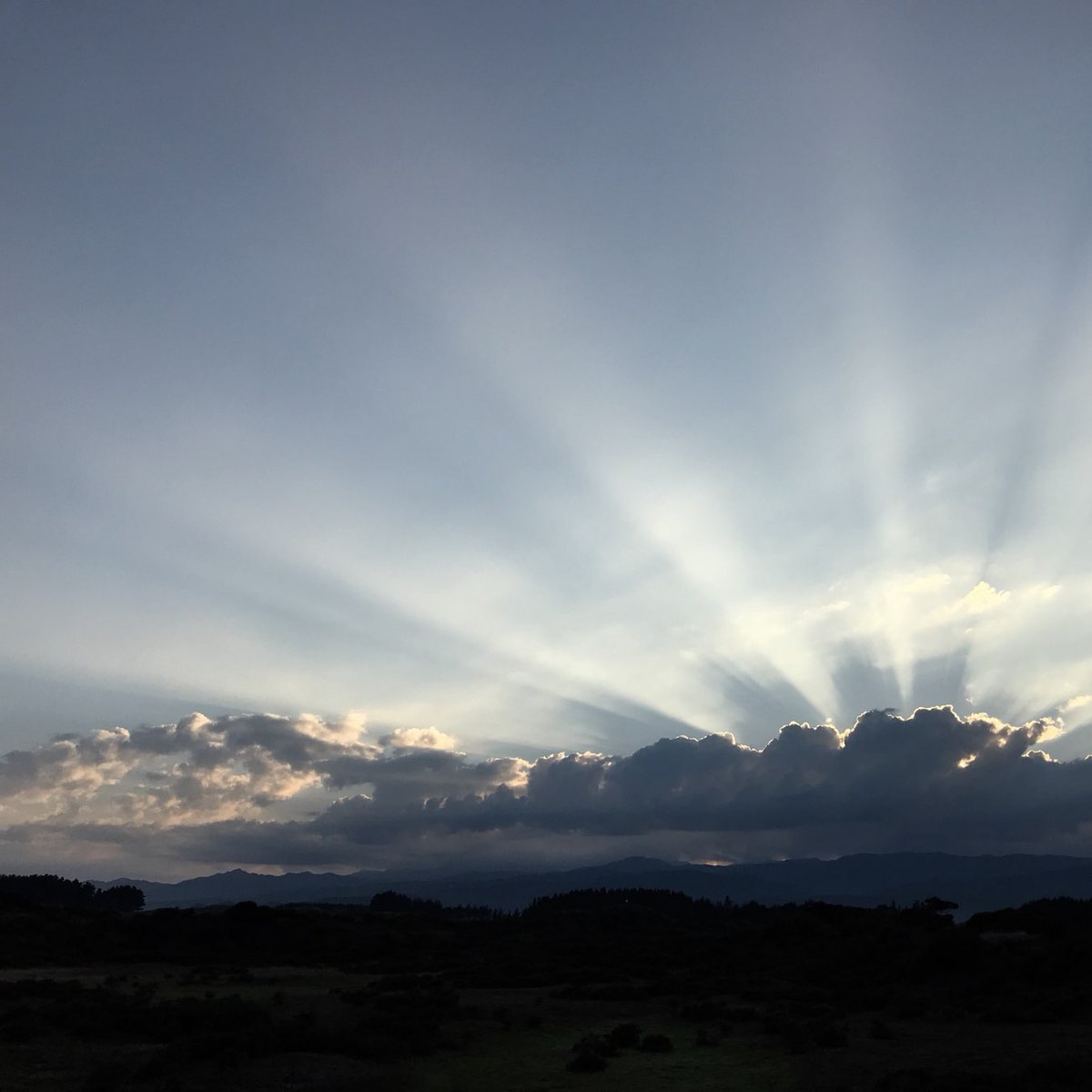 Rays of sun shining up from clouds below.