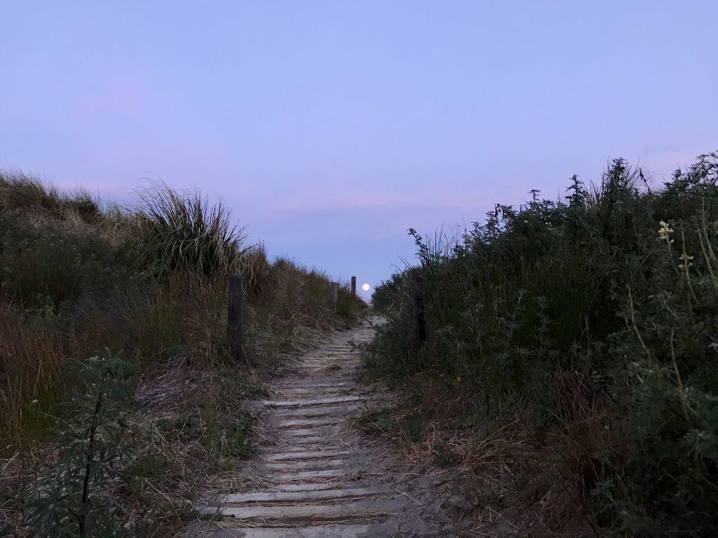 Small disc of a full moon at the end of a track to the beach.