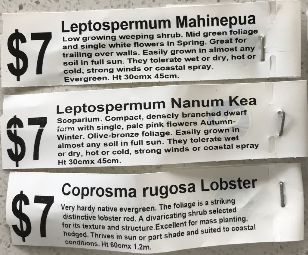 Labels from Leptospermum Mahinepua, Leptospermum Nanum Kea, and Coprosma rugosa Lobster.