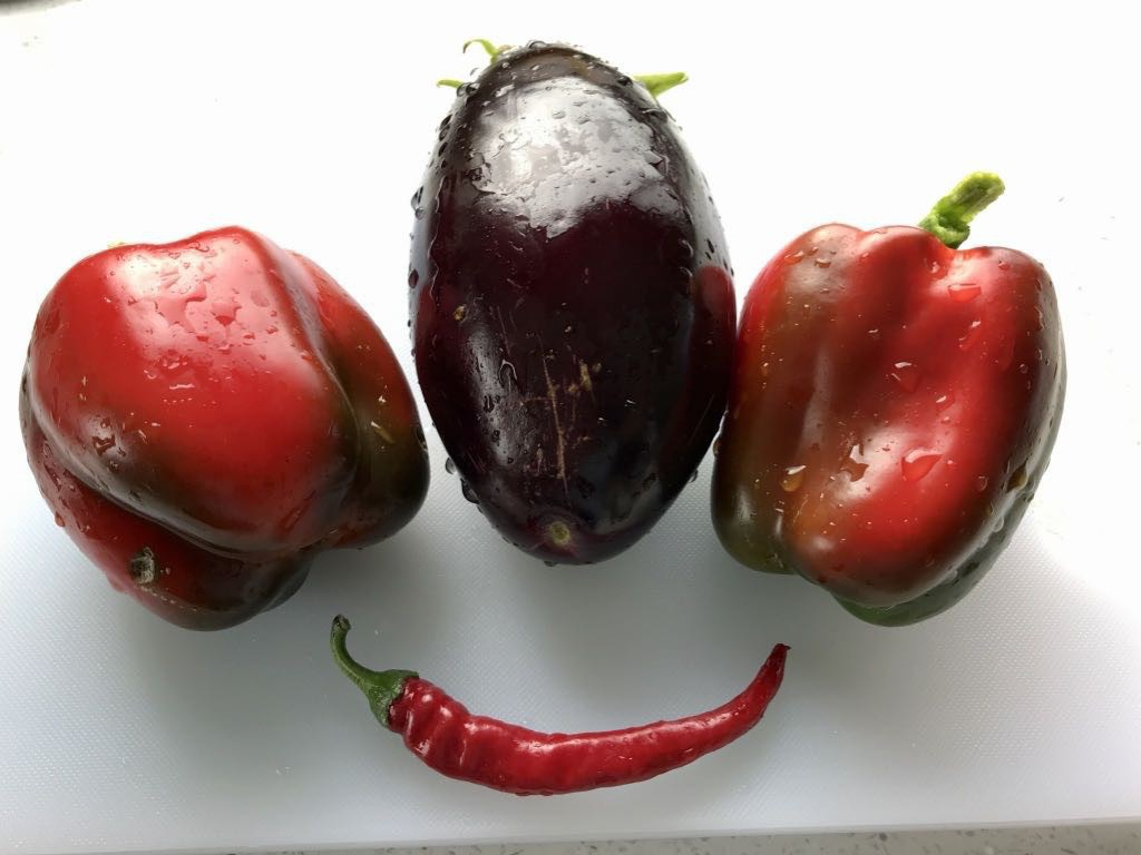 Two red capsicums, an aubergine, and a red chili.