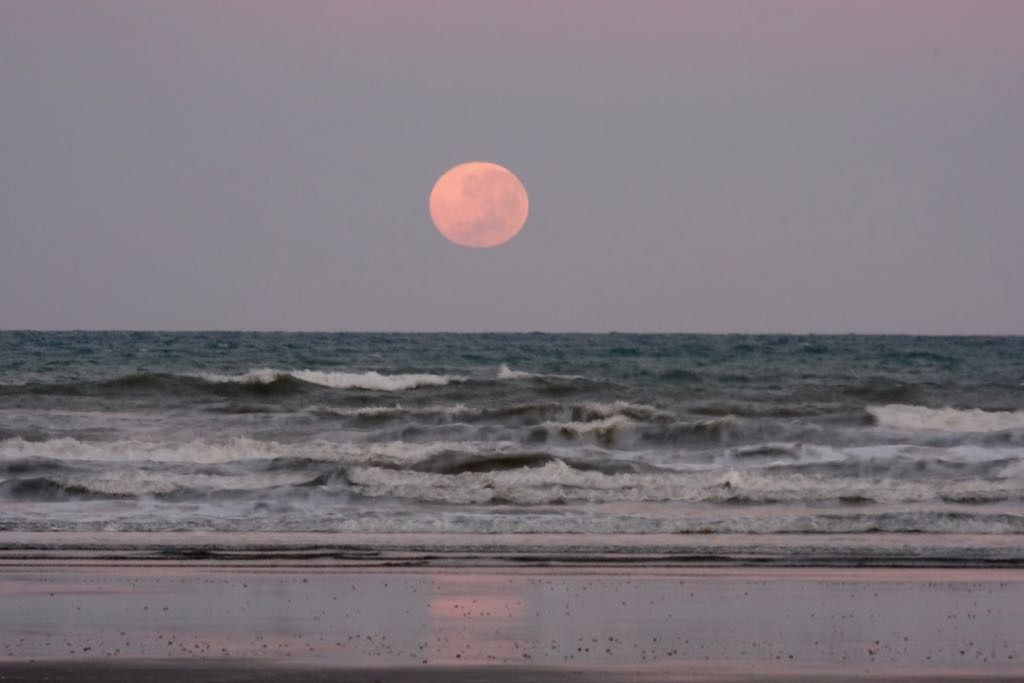 Large peach coloured full moon just above the horizon with waves and a reflection in the foreground.
