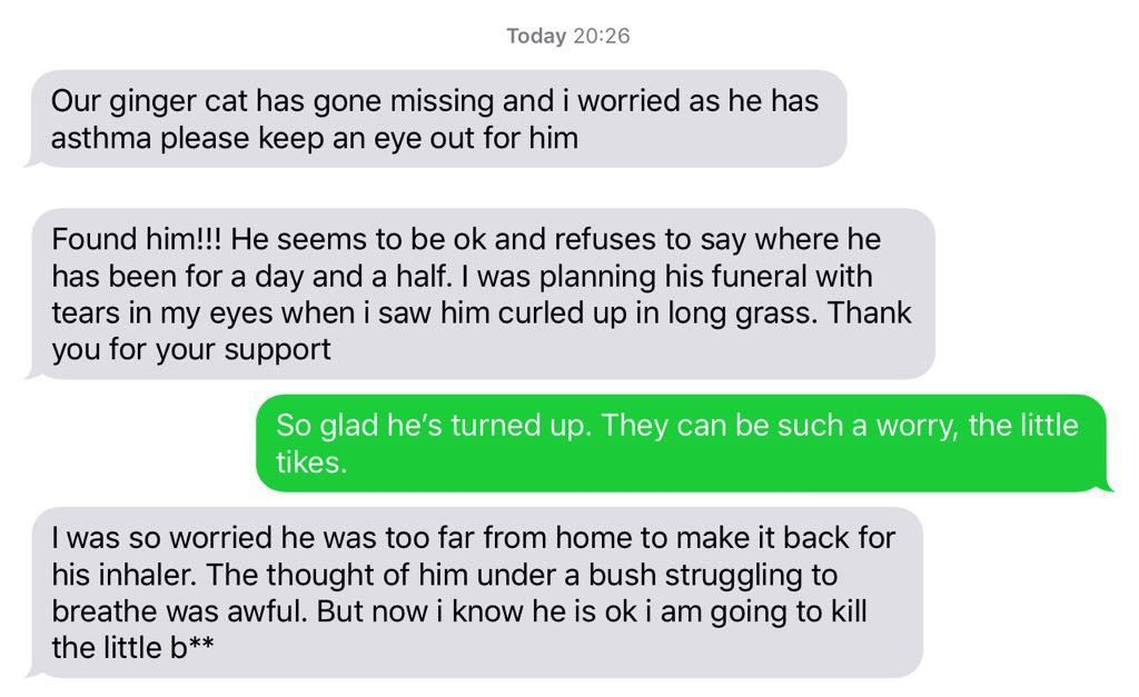 Screenshot: excerpts from a text message sequence about an asthmatic cat.