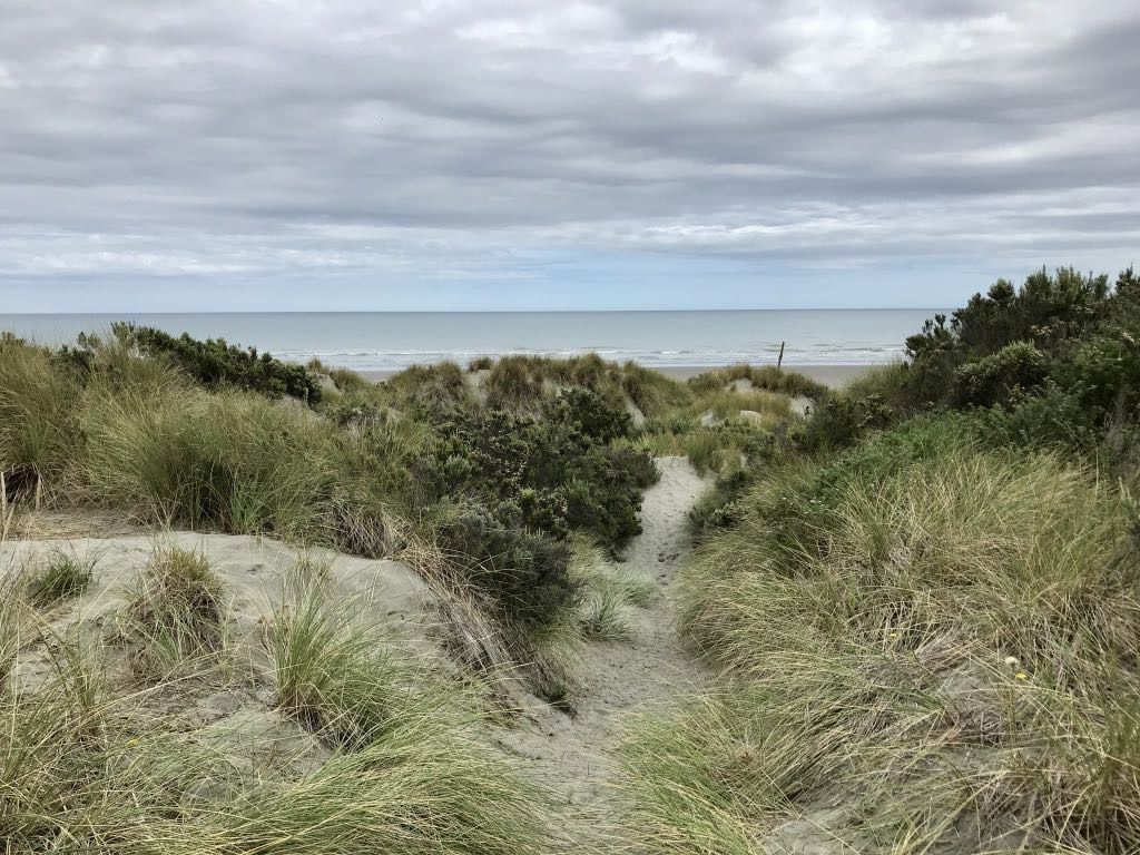 A track through dunes to the sea.