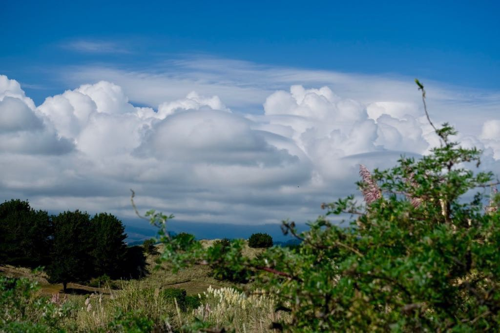 Fluffy clouds above vegetation and dunes.