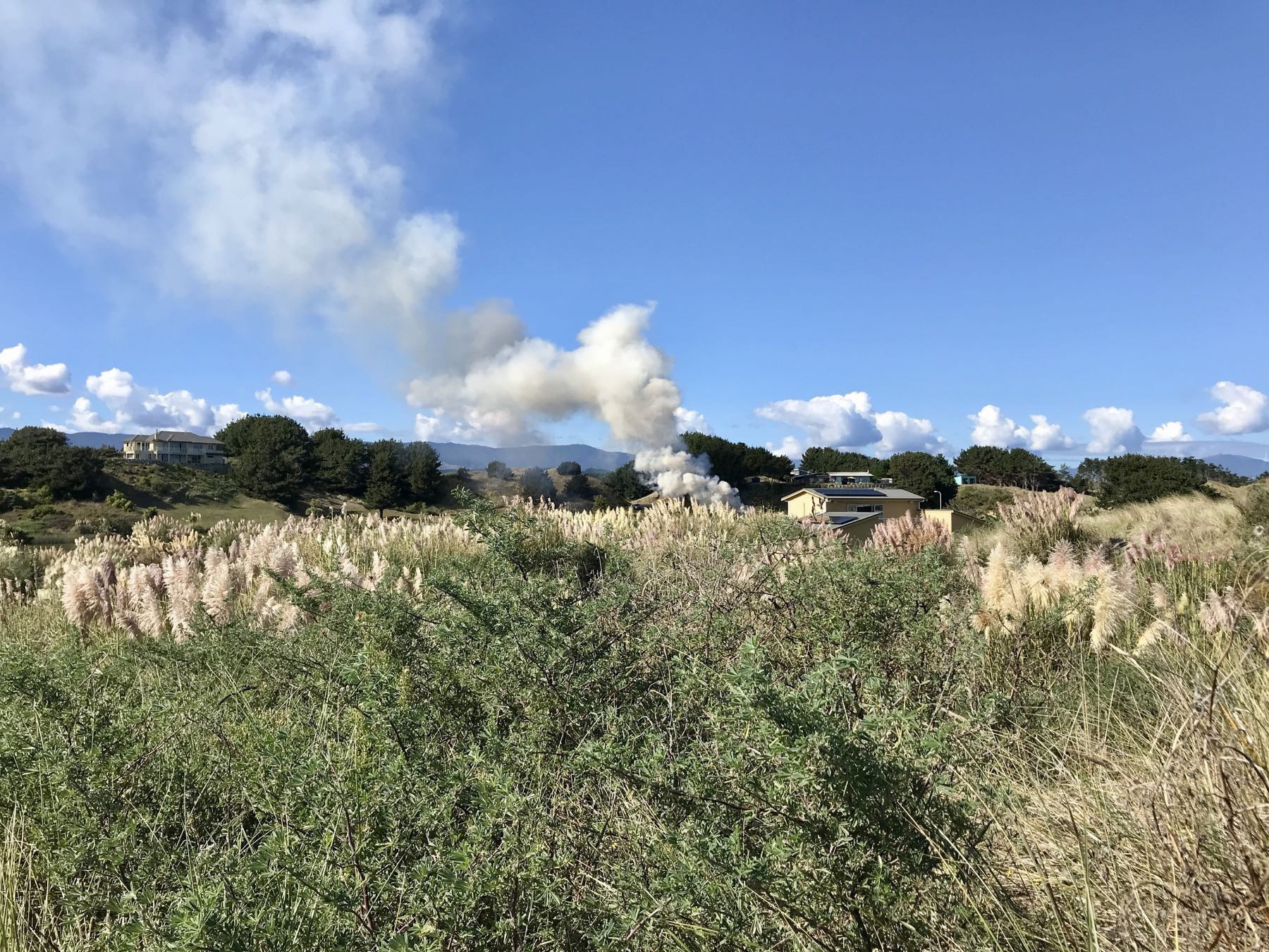 March 2019 smoky garden rubbish fire.