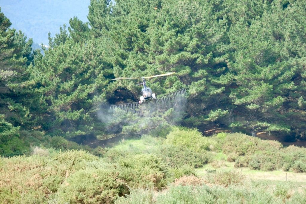 Low-flying helicopter with trees in the backgtound and spray coming from booms below.