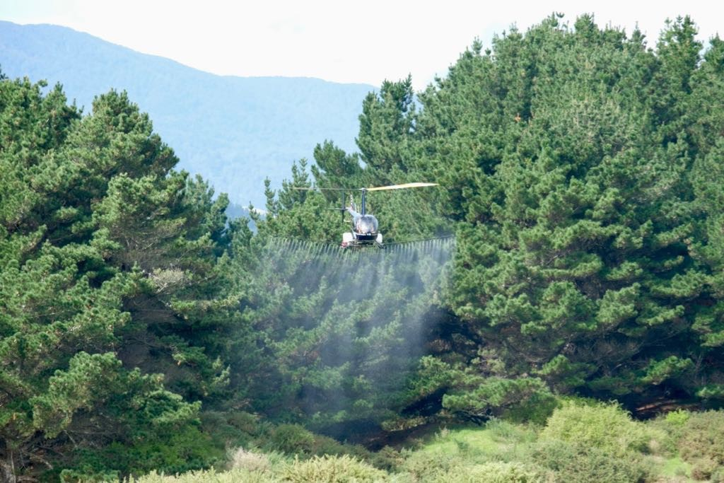 Another angle: Low-flying helicopter with trees in the backgtound and spray coming from booms below.