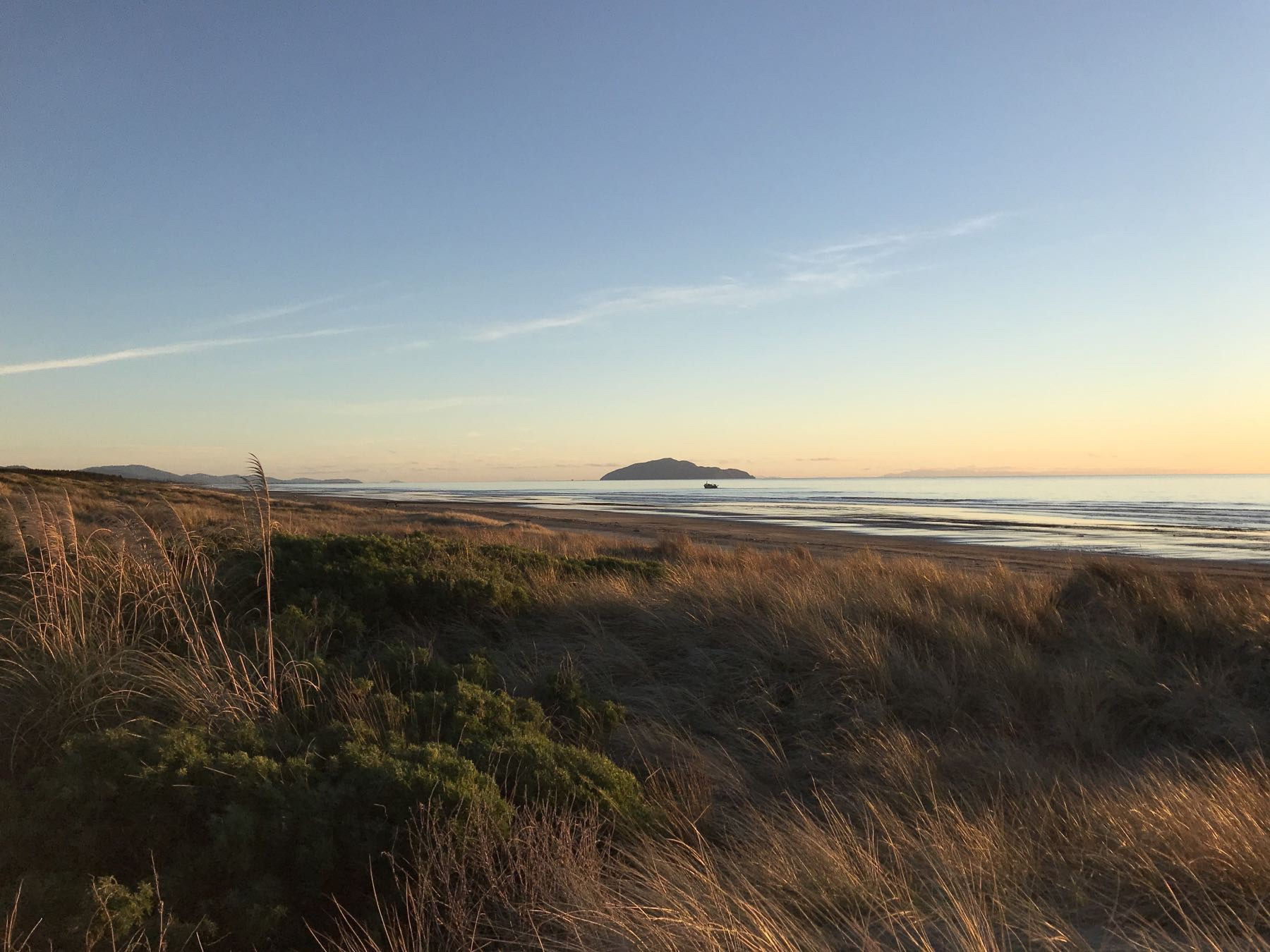 Looking south along the beach, with Kāpiti Island.