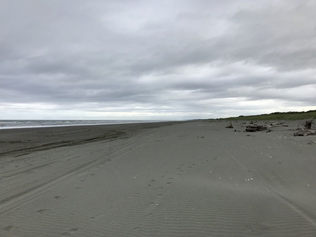 Looking north: empty beach as far as the eye can see.
