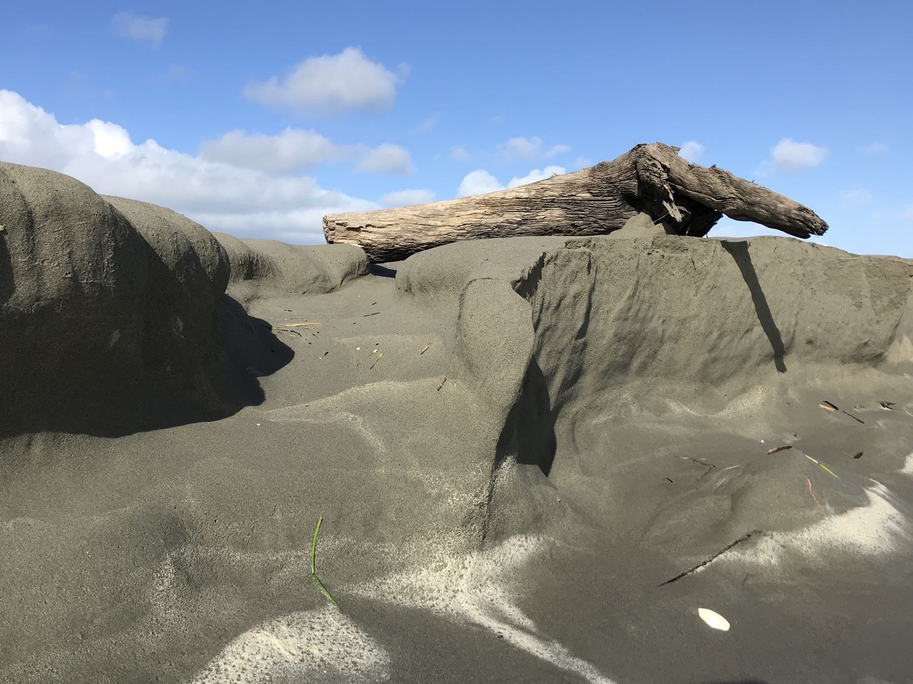 Sand cliff with log on top.