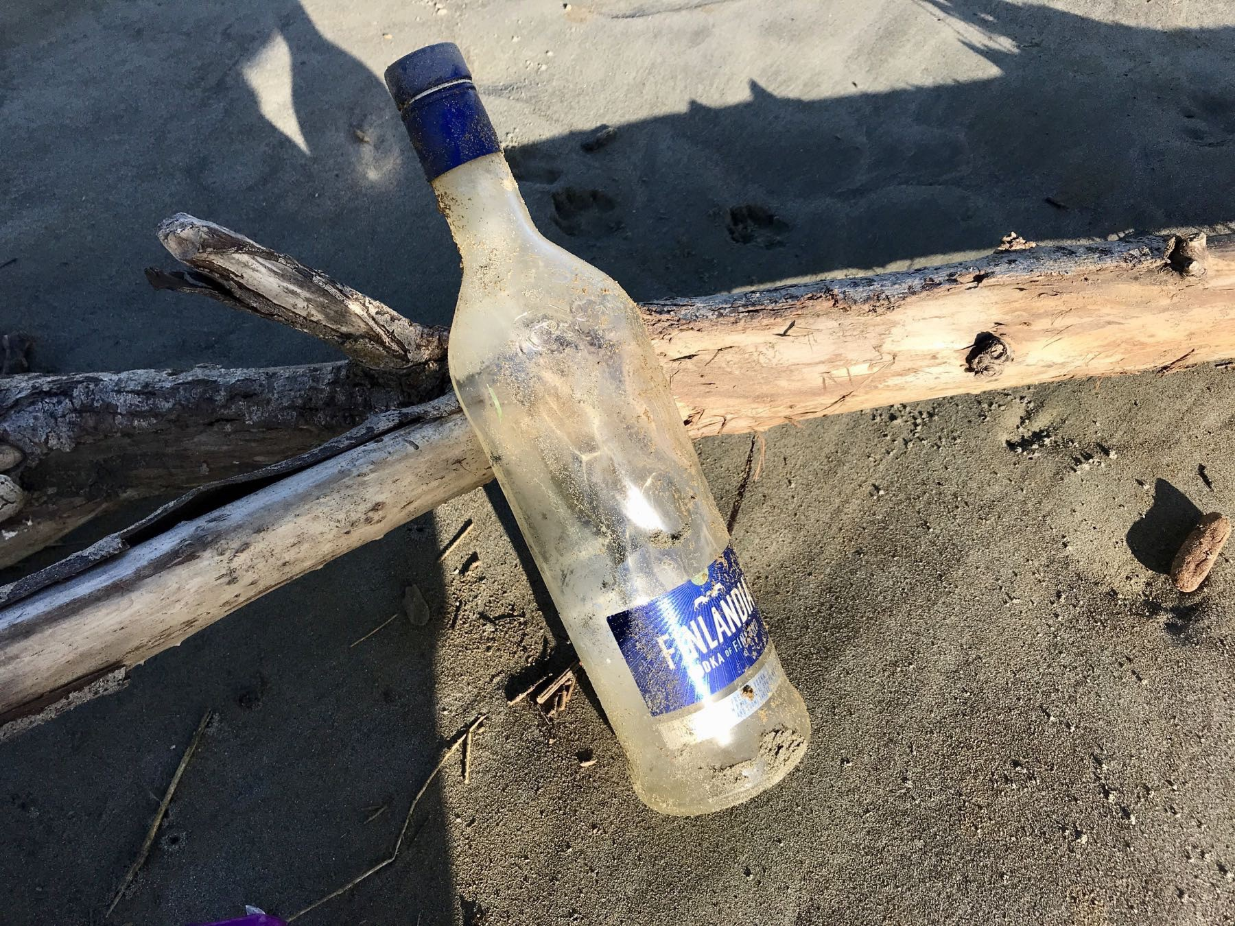 Empty bottle leaning against driftwood.
