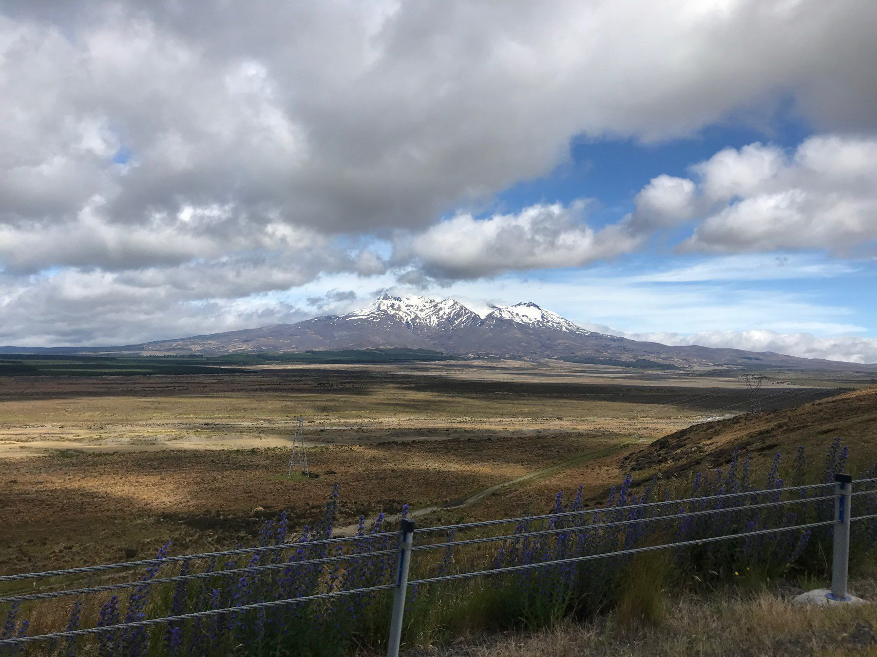 View across the Central Plateau to Mt Ruapehu.