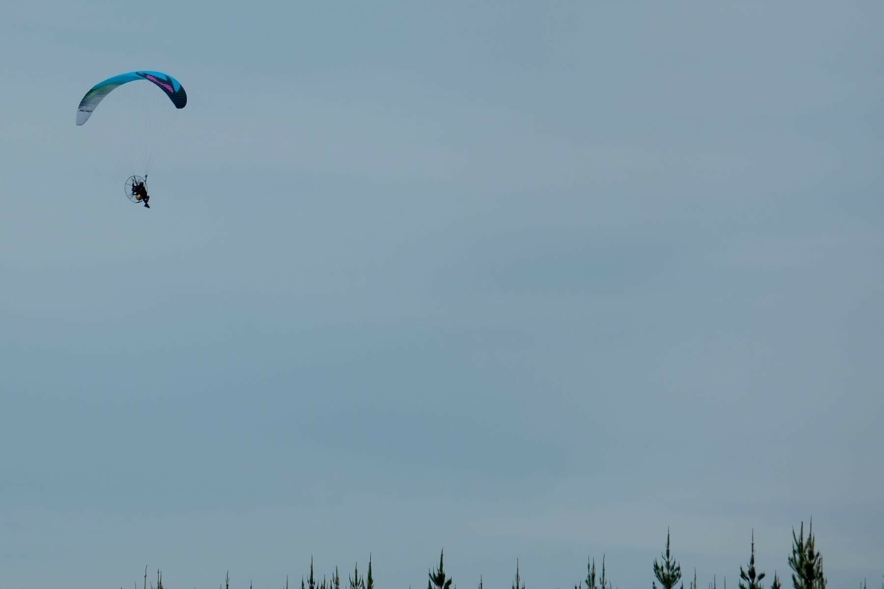 Microlight flyer below parachute near tree tops.
