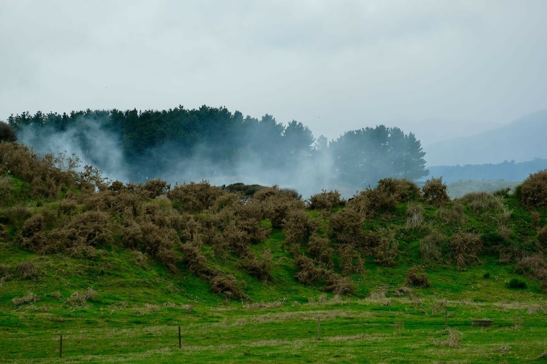 Spreading smoke from the green waste fire.