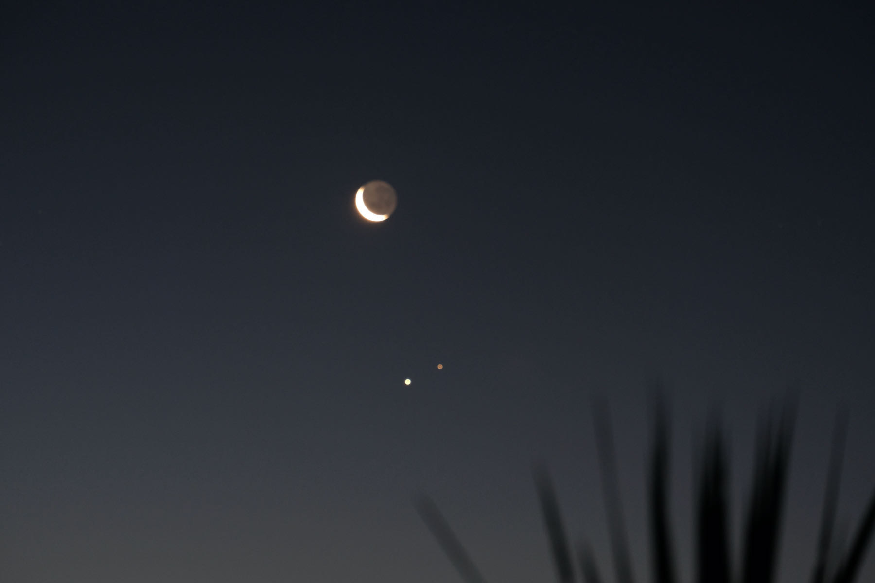 Crescent moon and two bright 'stars'.