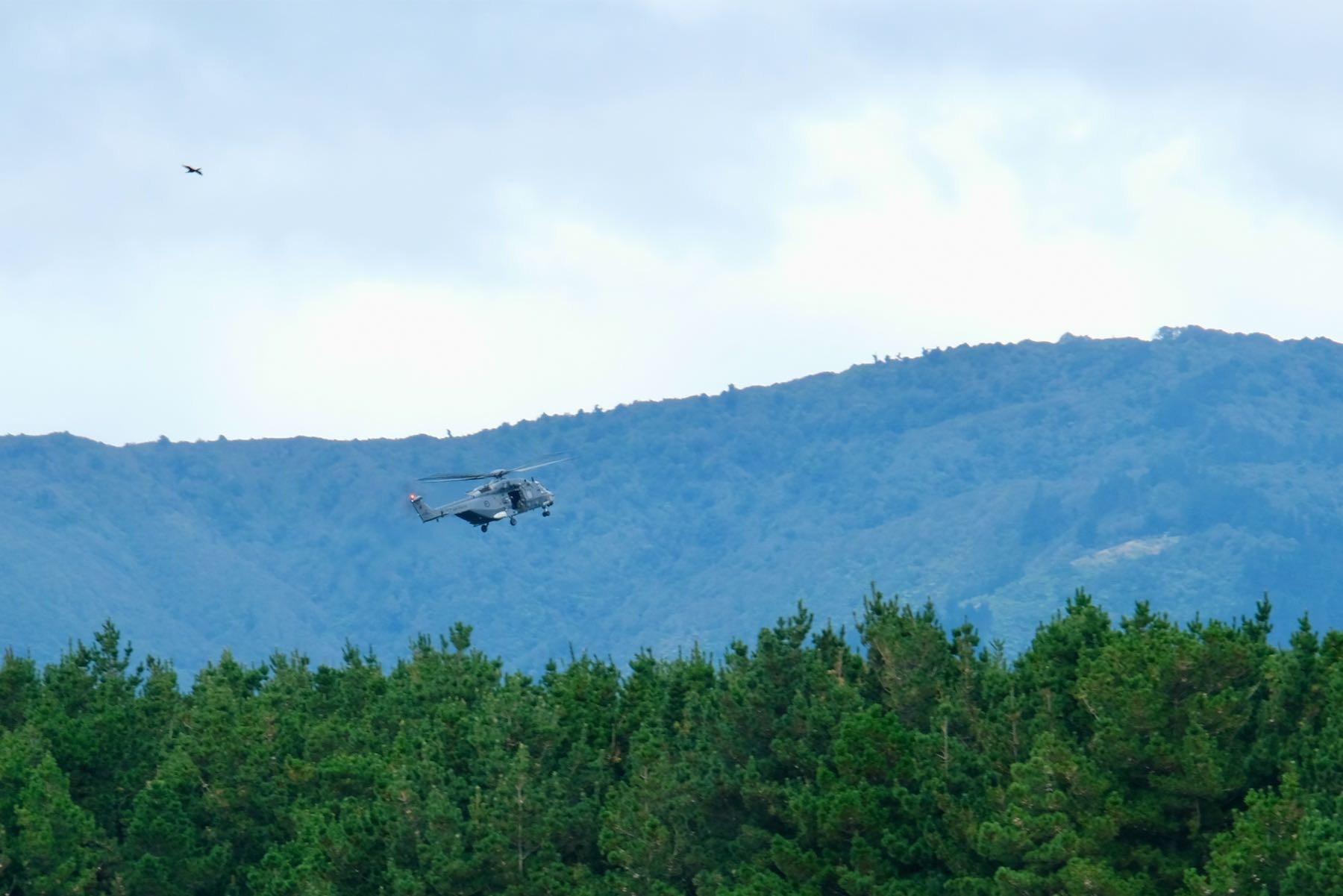 Comparative closeup of AIr Force helicopter hovering above trees.
