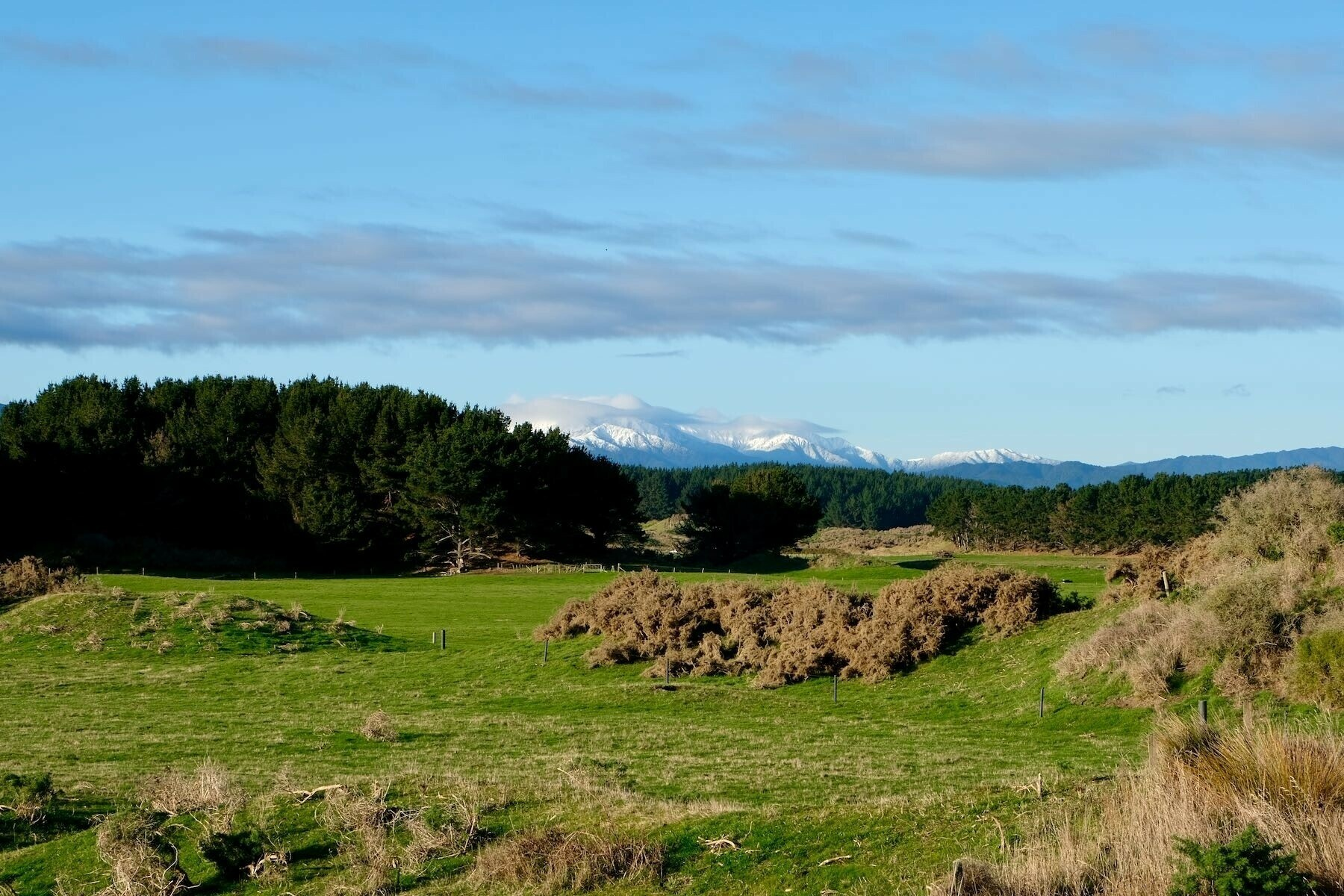 Zoomed in photo of paddocks and a snow-topped hill.