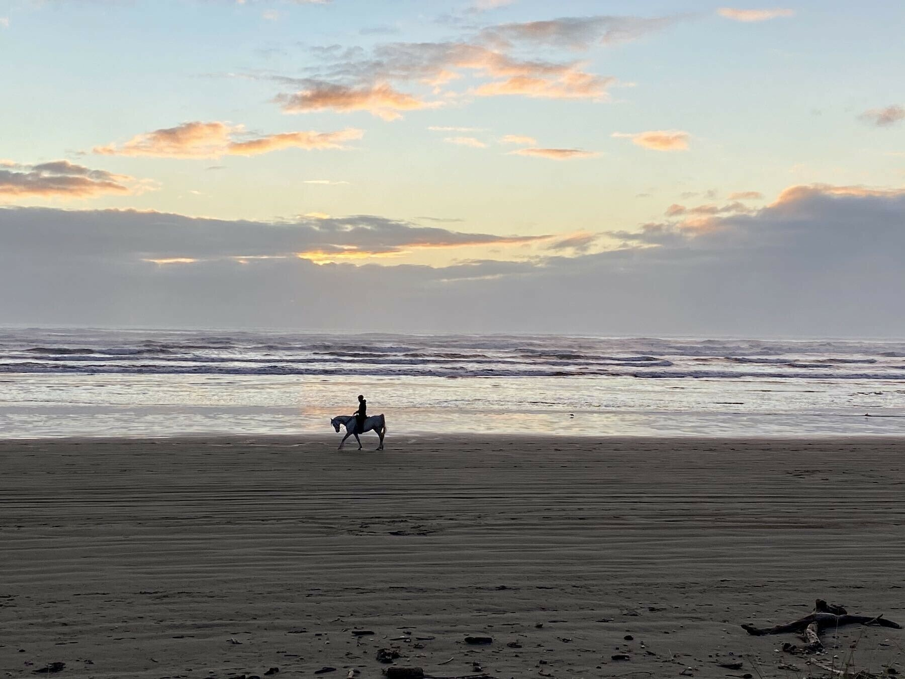 Horse and rider at the edge of the sea, with setting sun reflections on the water.