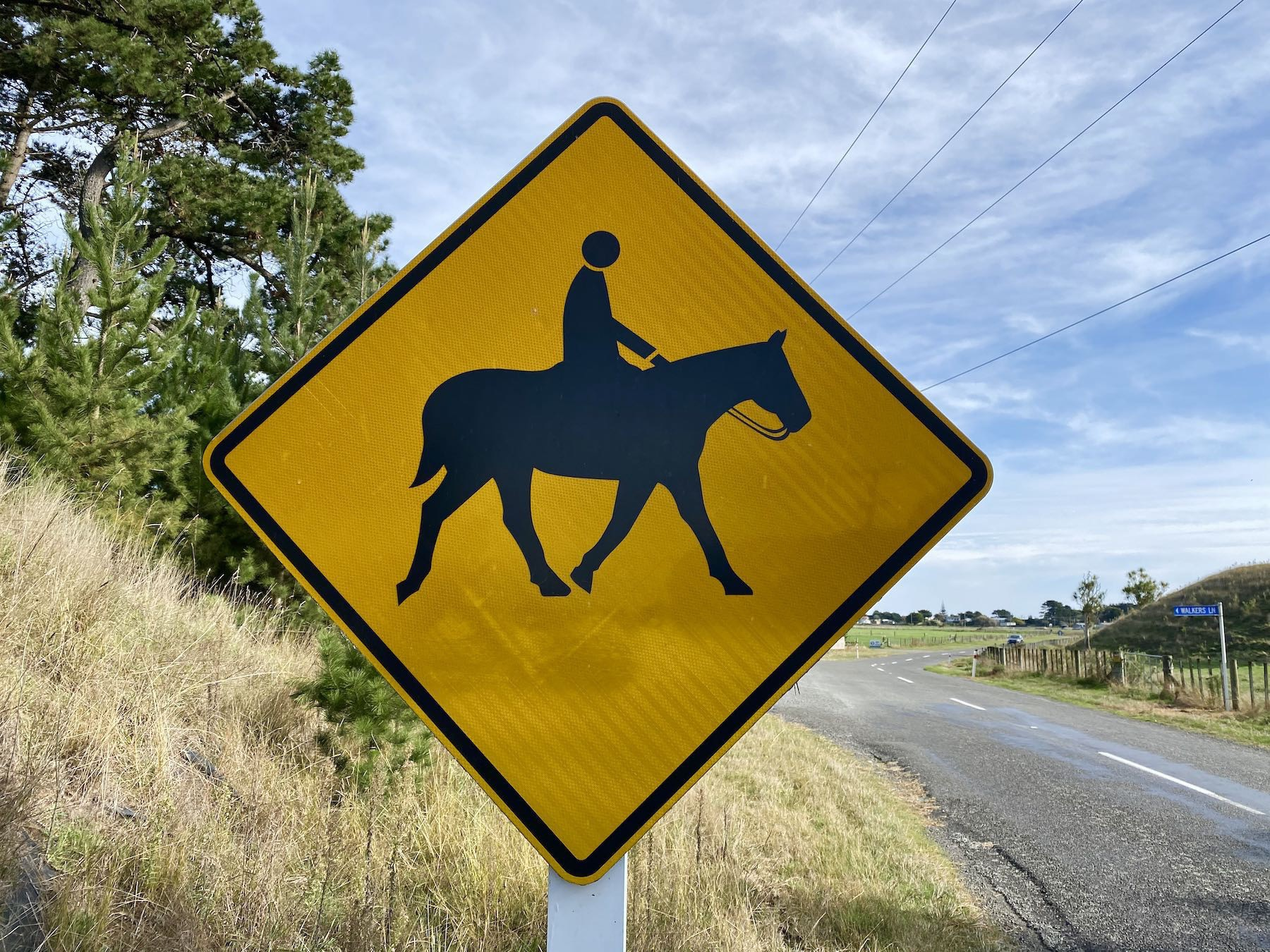 Traffic sign with yellow background warning of horses and riders ahead.