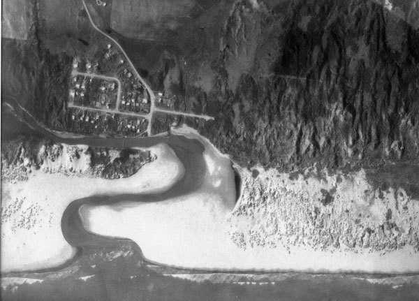 Aerial view of Waikawa in 1965.