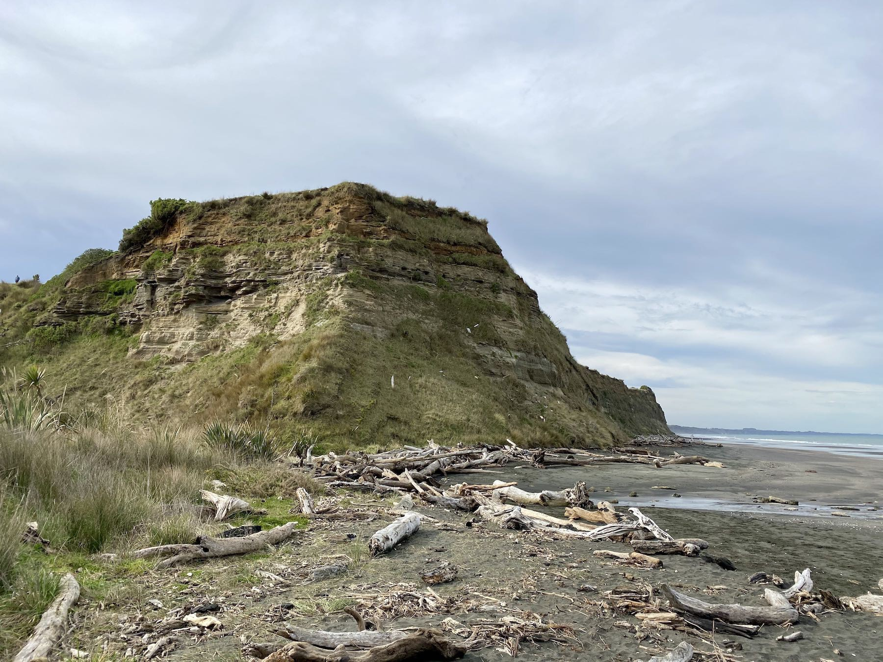 Across sand and driftwood to another hill.