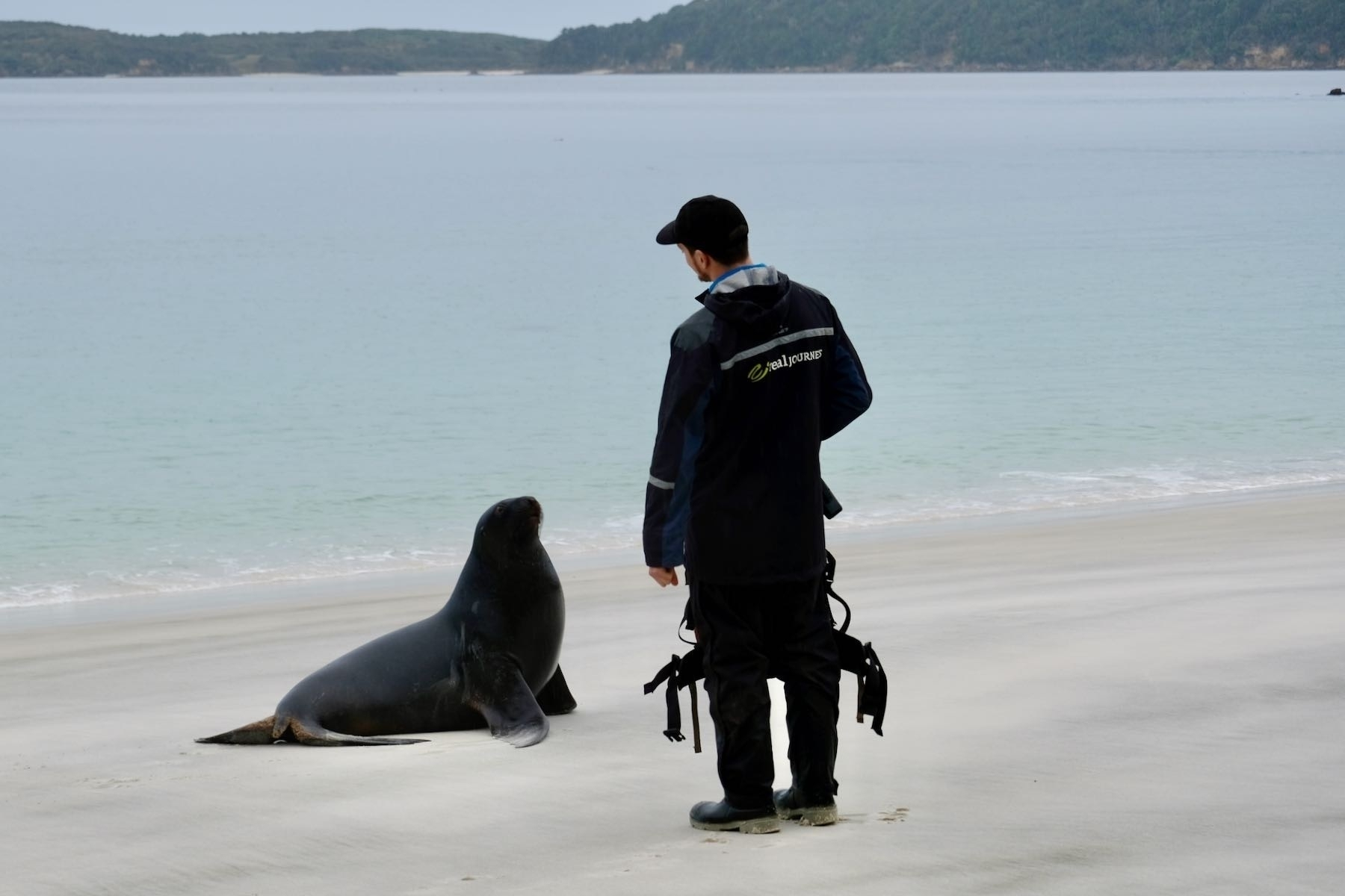 Sealion and our guide, Gabriel.