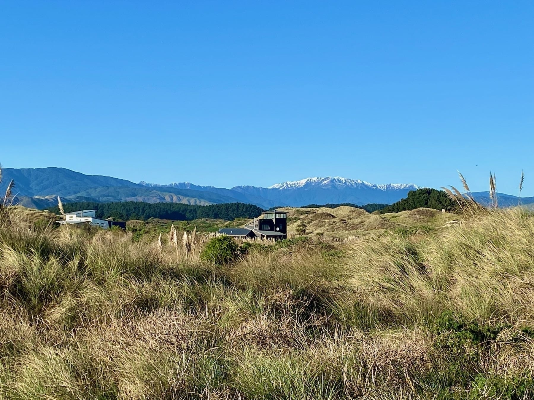 A view across dunes and paddocks to the snowy peak of a mountain.