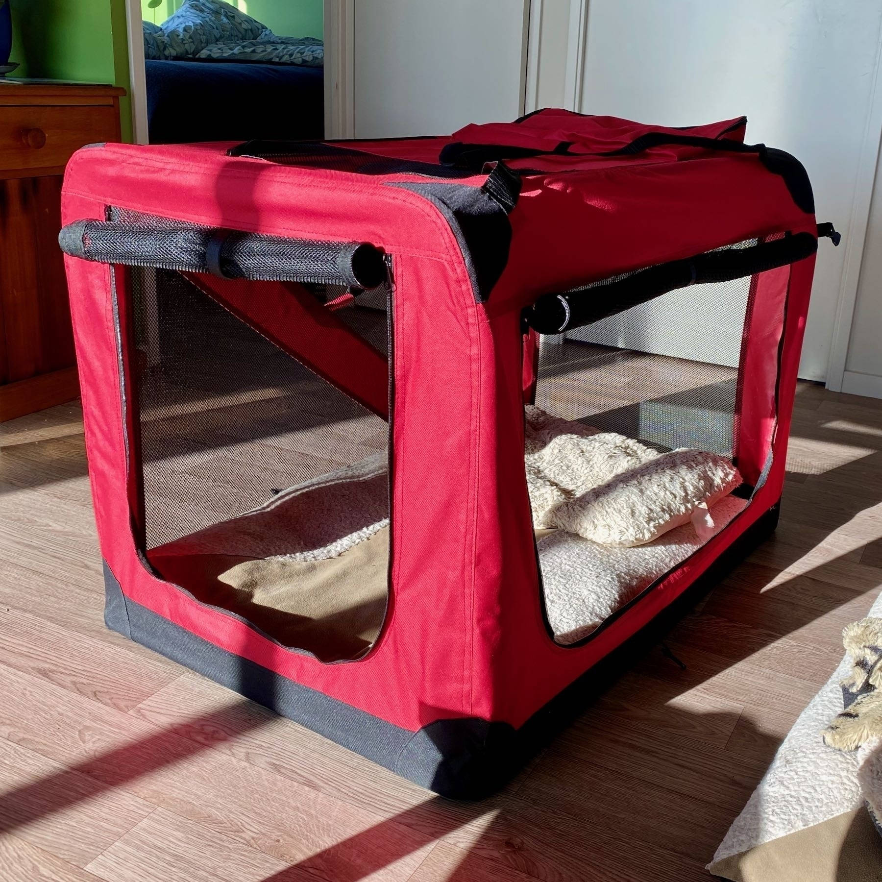 Red soft-sided dog crate.