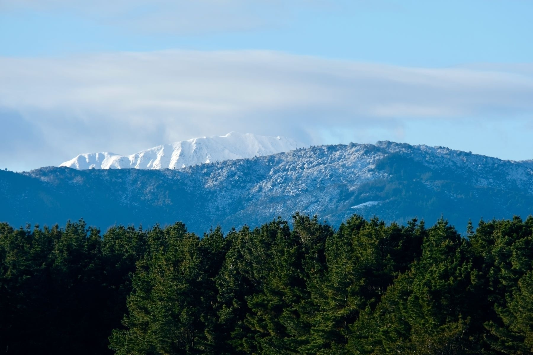 Snowy peak and foothills above trees.