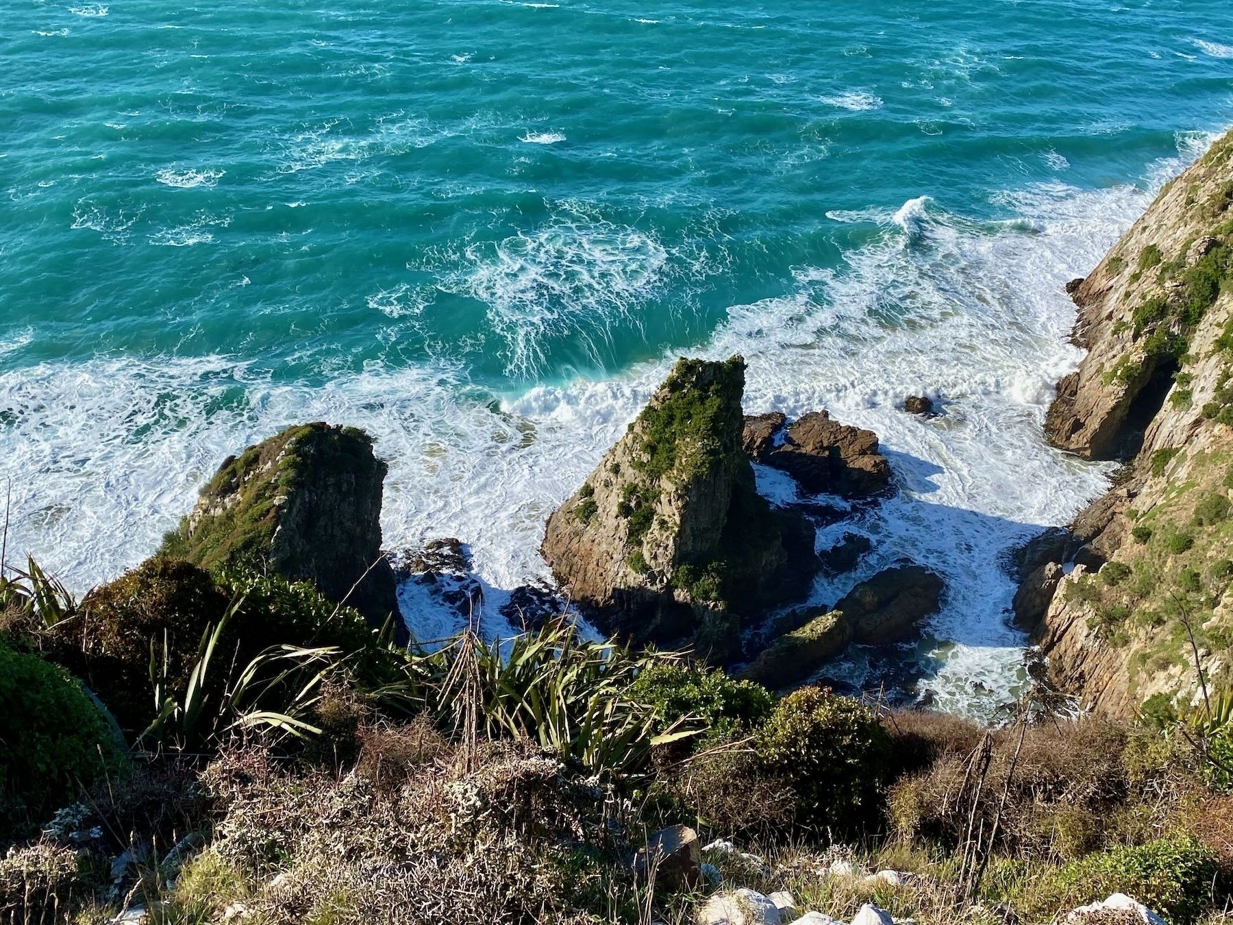 Nugget Point, Tokata, looking down the sheer cliff to the rocky coastline.
