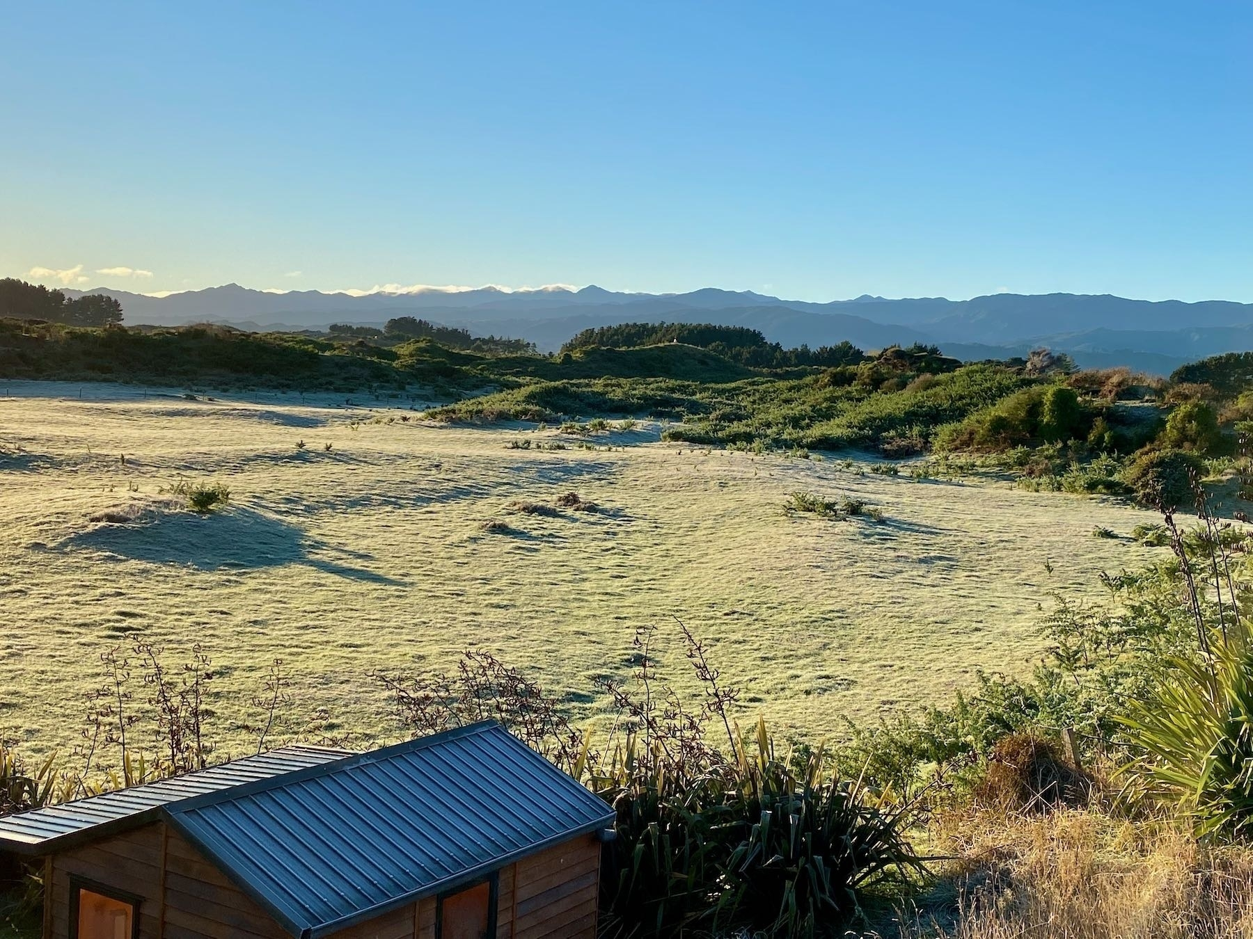 Paddock with coat of frost.