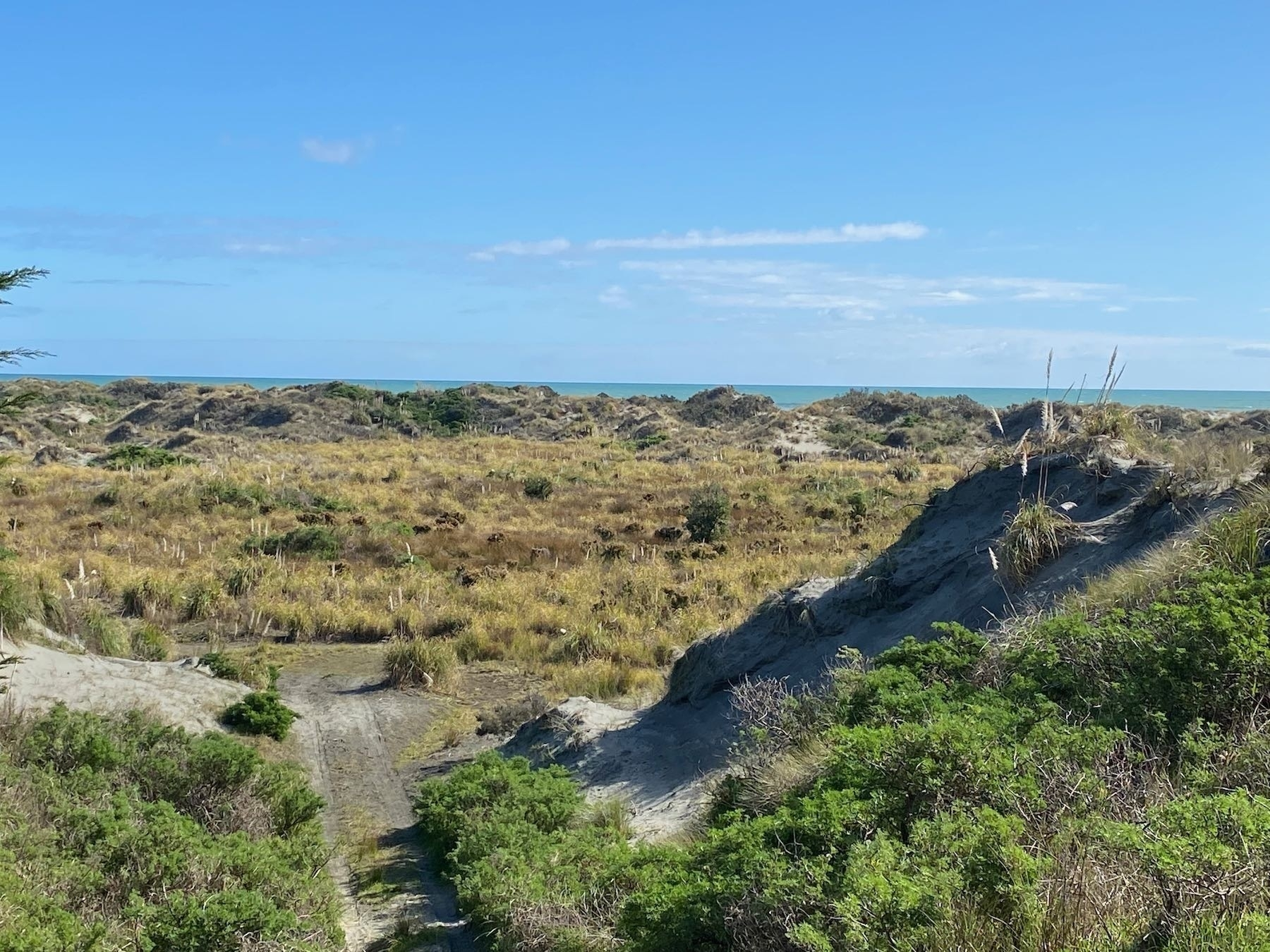 Looking west across scrub to the sea.